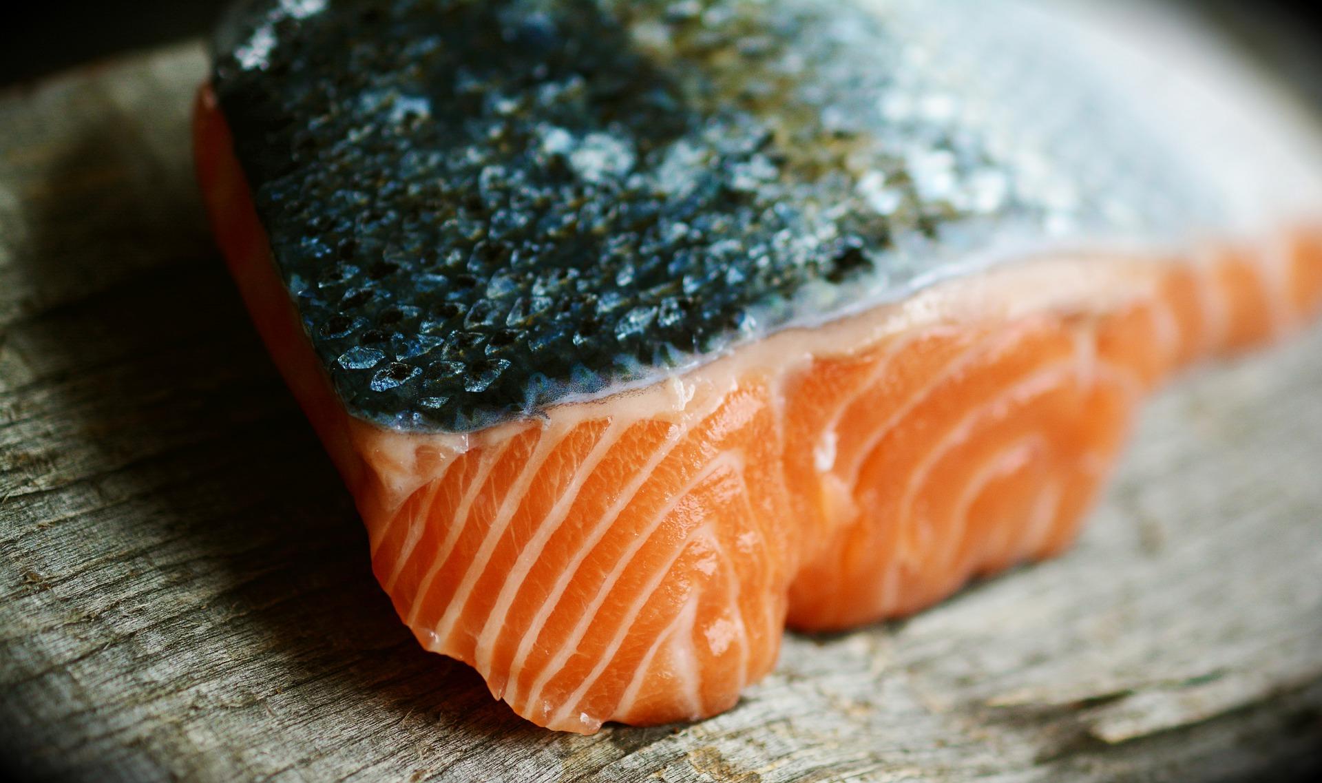 salmon-3139387_1920