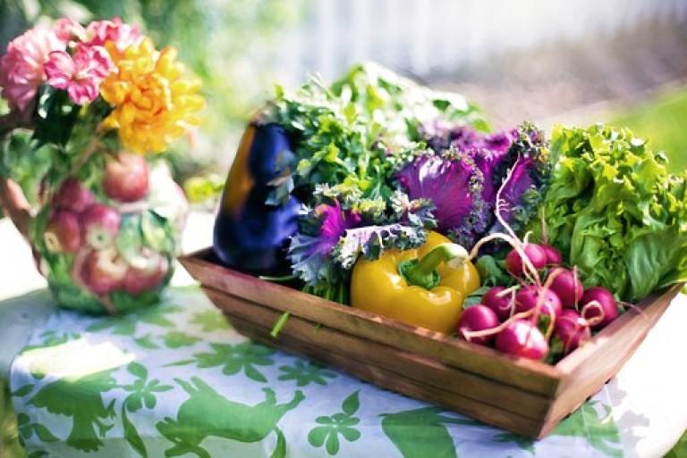 vegetables-790021__340